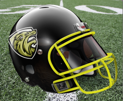 Forest Hills Wolverines Helmet on Booker Field